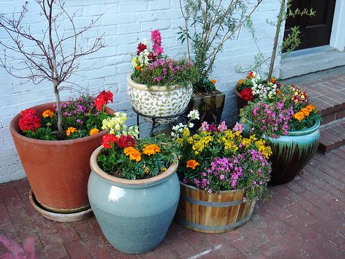 Цветы в уличных вазонах на даче