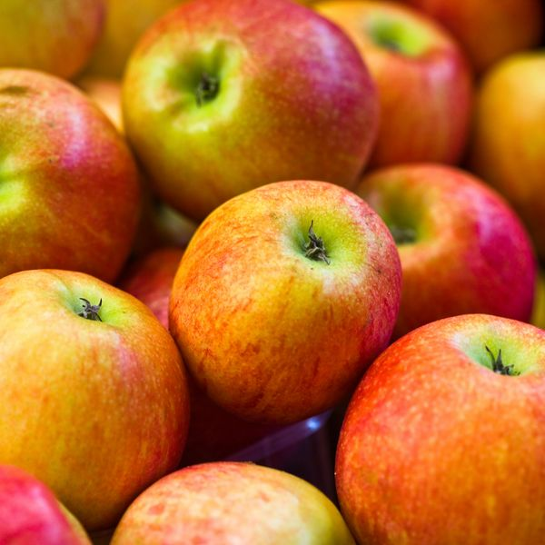 Самые полезные овощи и фрукты